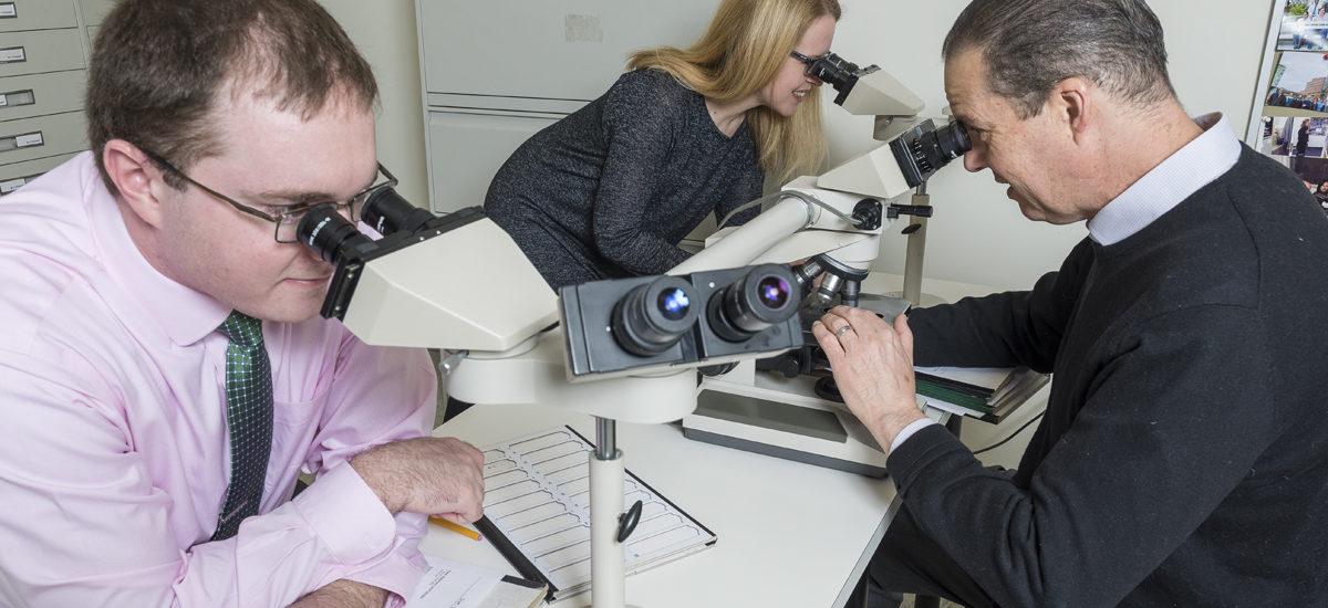 Johns Hopkins Pathologists Examining Slides